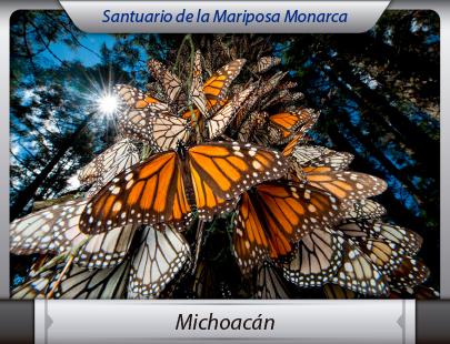 Fletes a Michoacán